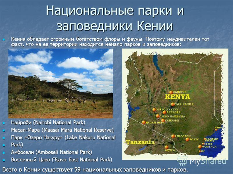 Национальные парки и заповедники Кении Кения обладает огромным богатством флоры и фауны. Поэтому неудивителен тот факт, что на ее территории находится немало парков и заповедников: Кения обладает огромным богатством флоры и фауны. Поэтому неудивителе