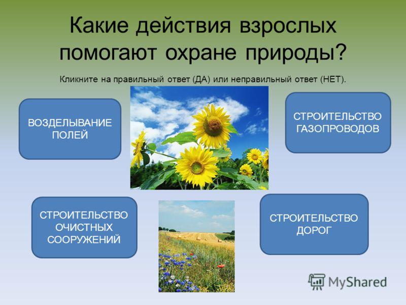 Какие действия взрослых помогают охране природы? Кликните на правильный ответ (ДА) или неправильный ответ (НЕТ). СТРОИТЕЛЬСТВО ОЧИСТНЫХ СООРУЖЕНИЙ ВОЗДЕЛЫВАНИЕ ПОЛЕЙ СТРОИТЕЛЬСТВО ГАЗОПРОВОДОВ СТРОИТЕЛЬСТВО ДОРОГ