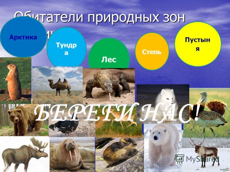 Обитатели природных зон России Арктика Тундр а Лес Степь Пустын я БЕРЕГИ НАС!