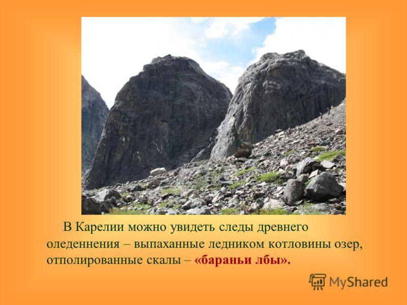 В Карелии можно увидеть следы древнего оледеннения – выпаханные ледником котловины озер, отполированные скалы – «бараньи лбы».