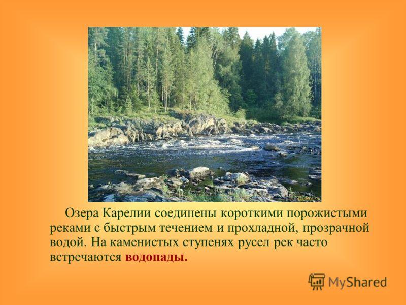 Озера Карелии соединены короткими порожистыми реками с быстрым течением и прохладной, прозрачной водой. На каменистых ступенях русел рек часто встречаются водопады.