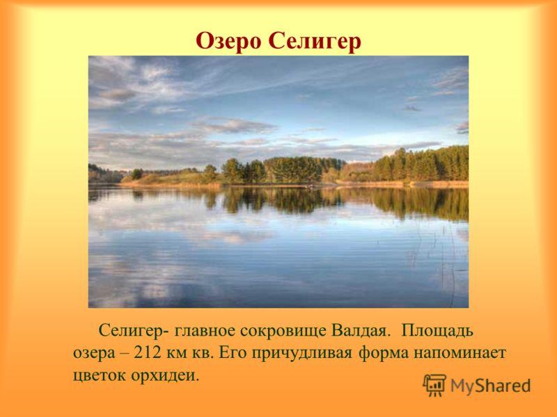 Озеро Селигер Селигер- главное сокровище Валдая. Площадь озера – 212 км кв. Его причудливая форма напоминает цветок орхидеи.