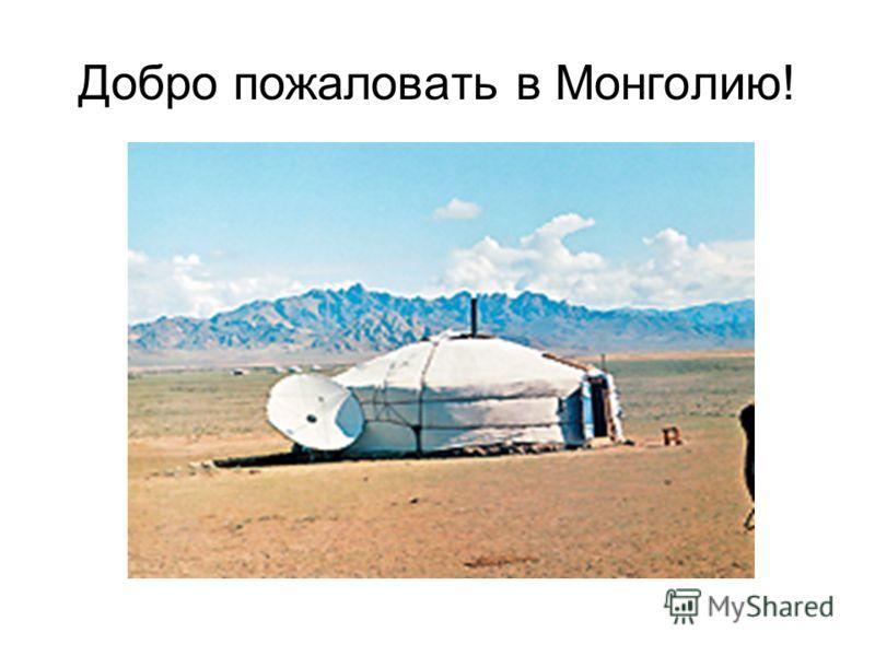 Добро пожаловать в Монголию!