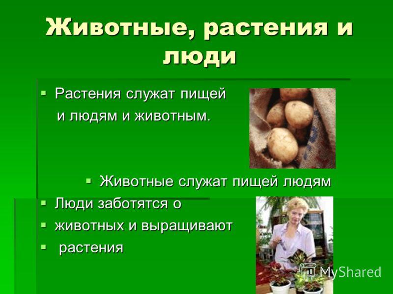 Животные, растения и люди Растения служат пищей Растения служат пищей и людям и животным. и людям и животным. Животные служат пищей людям Животные служат пищей людям Люди заботятся о Люди заботятся о животных и выращивают животных и выращивают растен