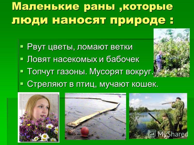 Маленькие раны,которые люди наносят природе : Рвут цветы, ломают ветки Рвут цветы, ломают ветки Ловят насекомых и бабочек Ловят насекомых и бабочек Топчут газоны. Мусорят вокруг. Топчут газоны. Мусорят вокруг. Стреляют в птиц, мучают кошек. Стреляют