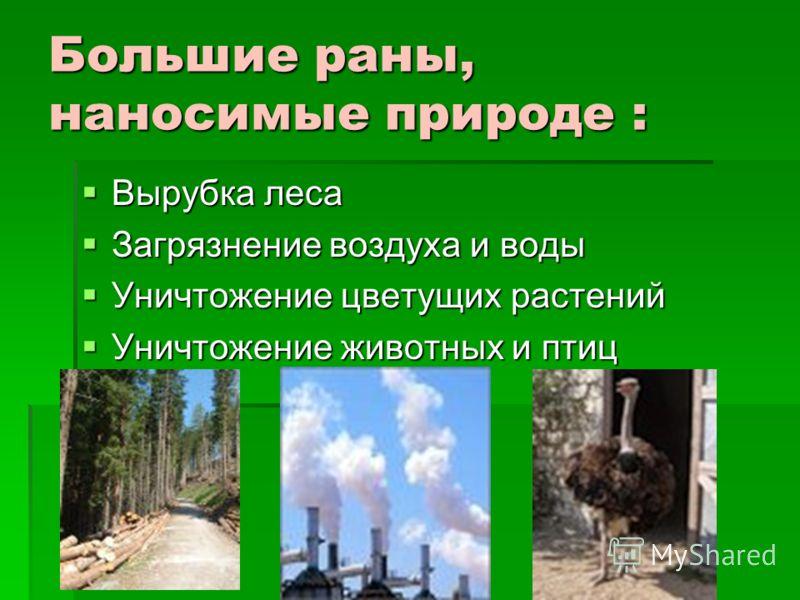 Большие раны, наносимые природе : Вырубка леса Вырубка леса Загрязнение воздуха и воды Загрязнение воздуха и воды Уничтожение цветущих растений Уничтожение цветущих растений Уничтожение животных и птиц Уничтожение животных и птиц