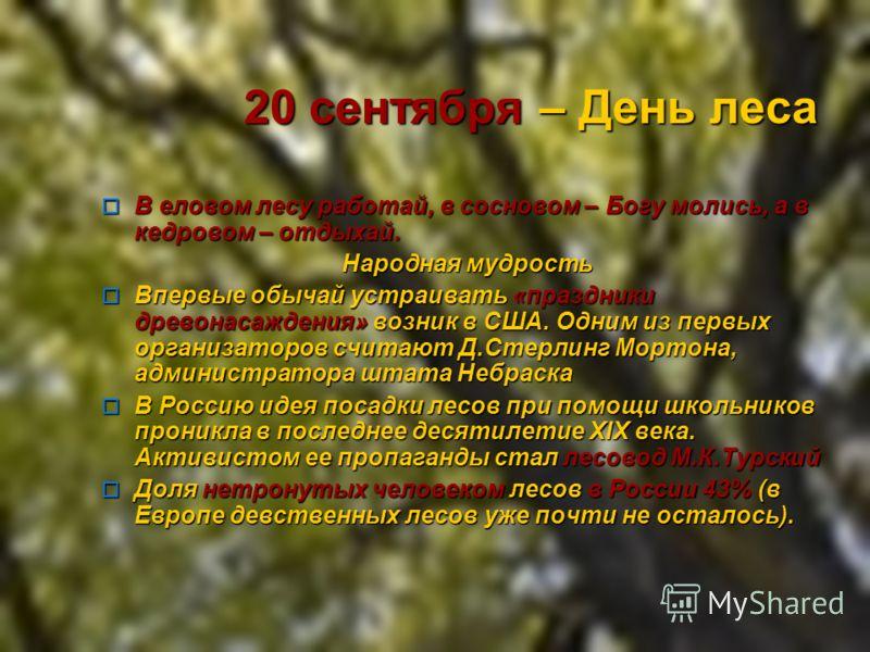 20 сентября – День леса В еловом лесу работай, в сосновом – Богу молись, а в кедровом – отдыхай. В еловом лесу работай, в сосновом – Богу молись, а в кедровом – отдыхай. Народная мудрость Народная мудрость Впеpвые обычай устpаивать «пpаздники дpевона