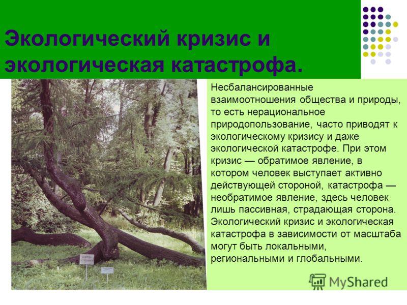 Экологический кризис и экологическая катастрофа. Несбалансированные взаимоотношения общества и природы, то есть нерациональное природопользование, часто приводят к экологическому кризису и даже экологической катастрофе. При этом кризис обратимое явле