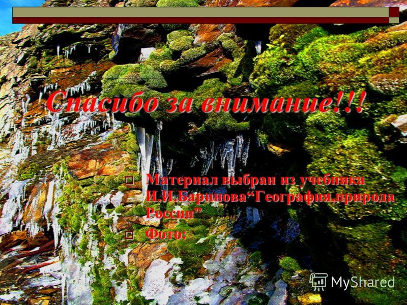 Спасибо за внимание!!! Материал выбран из учебника И.И.БариноваГеография,природа России Материал выбран из учебника И.И.БариноваГеография,природа России Фото: Фото: