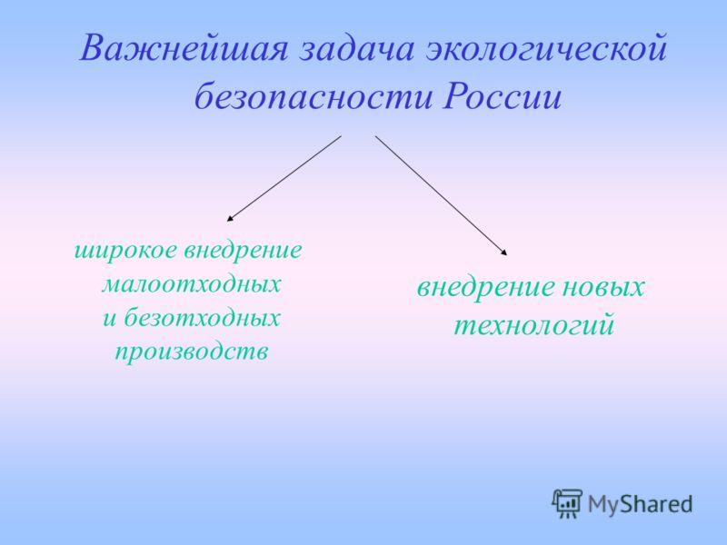Важнейшая задача экологической безопасности России широкое внедрение малоотходных и безотходных производств внедрение новых технологий