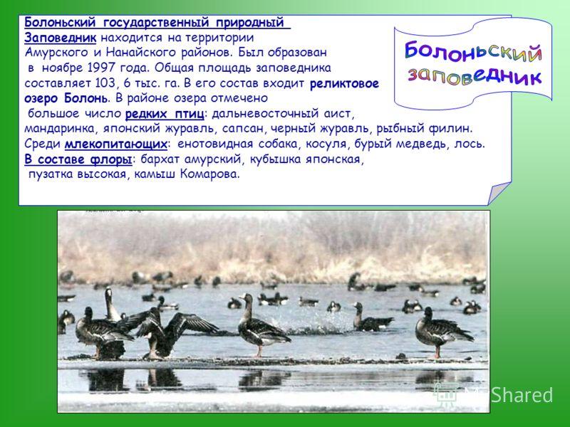 Болоньский государственный природный Заповедник находится на территории Амурского и Нанайского районов. Был образован в ноябре 1997 года. Общая площадь заповедника составляет 103, 6 тыс. га. В его состав входит реликтовое озеро Болонь. В районе озера