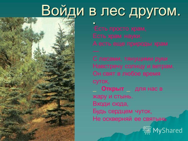 . Войди в лес другом. Есть просто храм, Есть храм науки. А есть еще природы храм С лесами, тянущими руки Навстречу солнцу и ветрам. Он свят в любое время суток, Открыт для нас в жару и стынь. Входи сюда, Будь сердцем чуток, Не оскверняй ее святынь