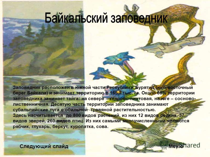 Следующий слайдМеню Заповедник расположен в южной части Республики Бурятия (юго-восточный берег Байкала) и занимает территорию в 165,7 тыс. га. Около 68% территории заповедника занимает тайга: на севере – кедрово-пихтовая, на юге – сосново- лиственни