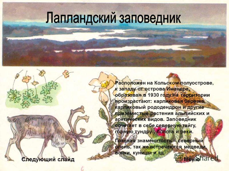Следующий слайдМеню Расположен на Кольском полуострове, к западу от острова Имандра, образован в 1930 году.На территории произрастают: карликовая березка, карликовый рододендрон и другие приземистые растения альпийских и арктических видов. Заповедник
