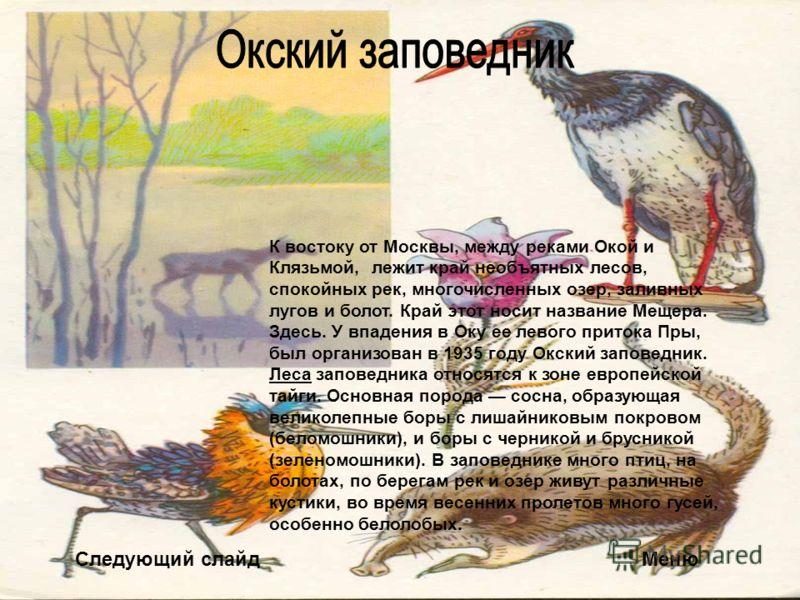 Следующий слайдМеню К востоку от Москвы, между реками Окой и Клязьмой, лежит край необъятных лесов, спокойных рек, многочисленных озер, заливных лугов и болот. Край этот носит название Мещера. Здесь. У впадения в Оку ее левого притока Пры, был органи
