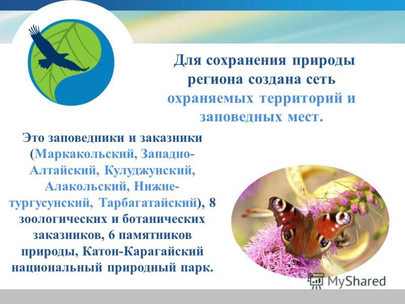 Для сохранения природы региона создана сеть охраняемых территорий и заповедных мест. Это заповедники и заказники (Маркакольский, Западно- Алтайский, Кулуджунский, Алакольский, Нижне- тургусунский, Тарбагатайский), 8 зоологических и ботанических заказ