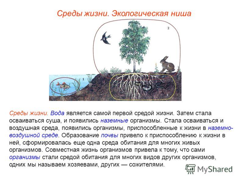 Среды жизни. Вода является самой первой средой жизни. Затем стала осваиваться суша, и появились наземные организмы. Стала осваиваться и воздушная среда, появились организмы, приспособленные к жизни в наземно- воздушной среде. Образование почвы привел