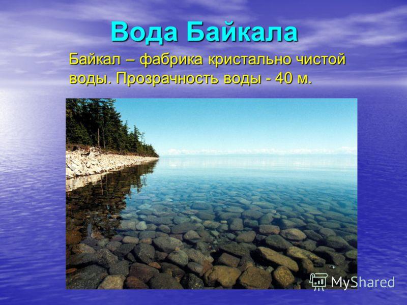 Вода Байкала Байкал – фабрика кристально чистой воды. Прозрачность воды - 40 м. Байкал – фабрика кристально чистой воды. Прозрачность воды - 40 м.