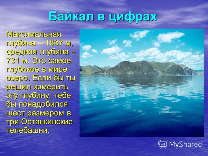 Байкал в цифрах Максимальная глубина – 1637 м, средняя глубина – 731 м. Это самое глубокое в мире озеро. Если бы ты решил измерить эту глубину, тебе бы понадобился шест размером в три Останкинские телебашни.