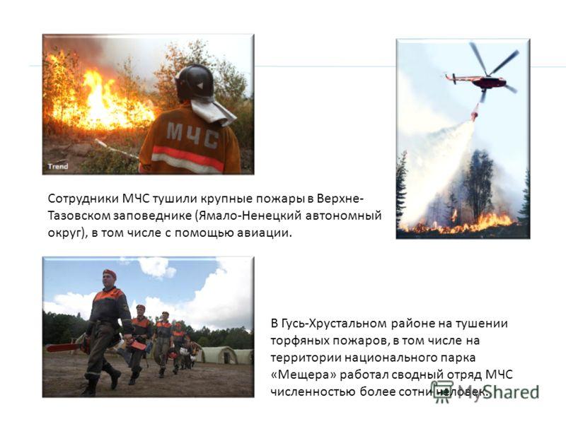 Сотрудники МЧС тушили крупные пожары в Верхне- Тазовском заповеднике (Ямало-Ненецкий автономный округ), в том числе с помощью авиации. В Гусь-Хрустальном районе на тушении торфяных пожаров, в том числе на территории национального парка «Мещера» работ
