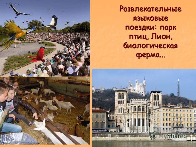 Развлекательные языковые поездки: парк птиц, Лион, биологическая ферма...