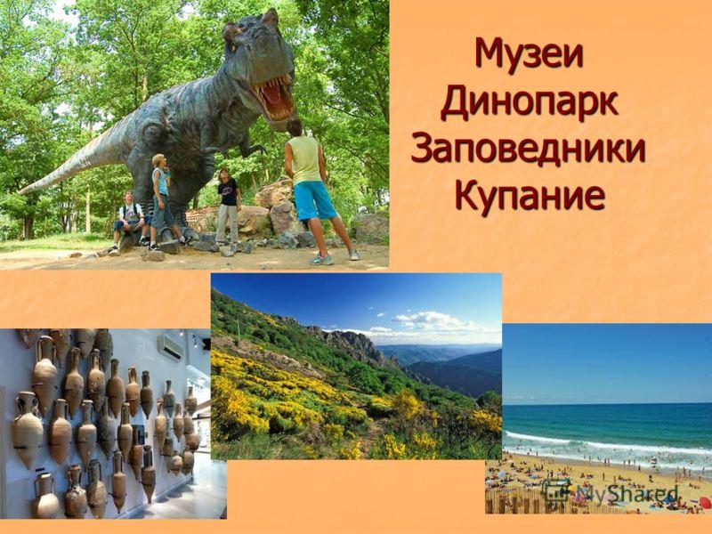 Музеи Динопарк Заповедники Купание