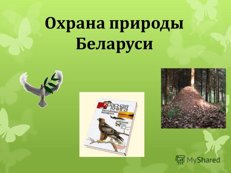 Охрана природы Беларуси