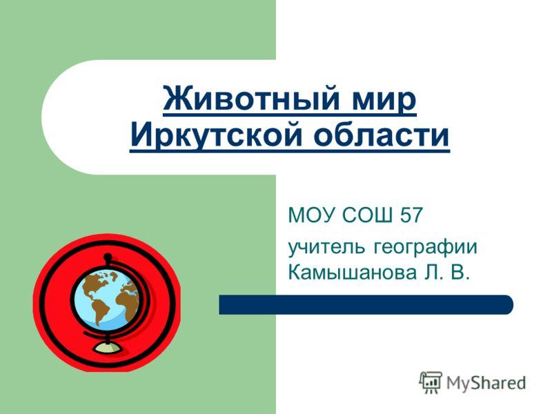 Животный мир Иркутской области МОУ СОШ 57 учитель географии Камышанова Л. В.