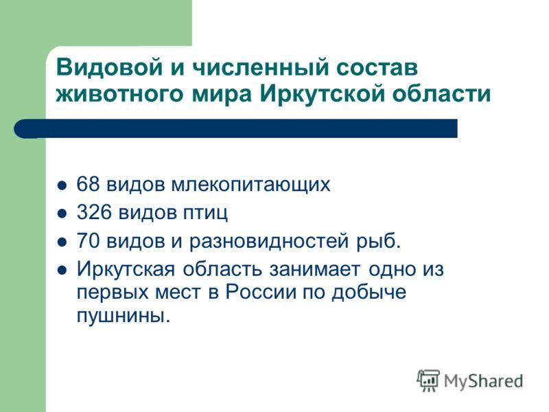 Видовой и численный состав животного мира Иркутской области 68 видов млекопитающих 326 видов птиц 70 видов и разновидностей рыб. Иркутская область занимает одно из первых мест в России по добыче пушнины.