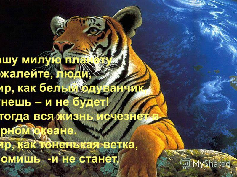Планета – сад! Я,верю, что жизнь на Земле не умрет. Земля не погибнет, Земля расцветет. Я люблю тебя, большое время, Но прошу – прислушайся ко мне: Не убей последнего тюленя, Пусть гуляет в темной глубине. Не губи последнего болота, Загнанного волка