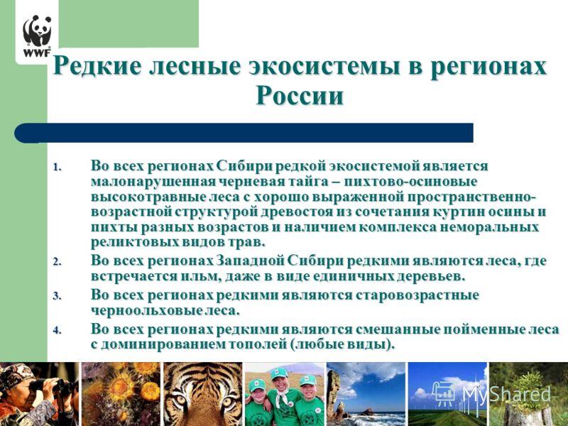 Редкие лесные экосистемы в регионах России 1. Во всех регионах Сибири редкой экосистемой является малонарушенная черневая тайга – пихтово-осиновые высокотравные леса с хорошо выраженной пространственно- возрастной структурой древостоя из сочетания ку