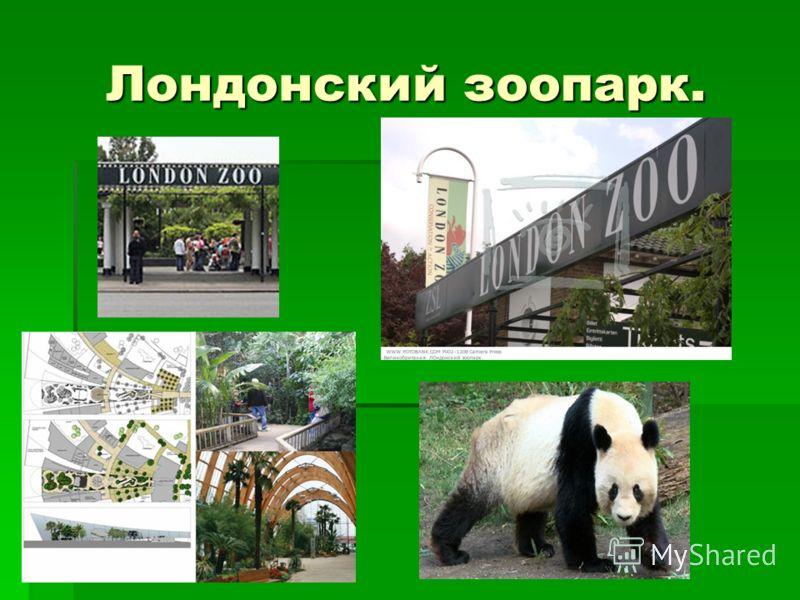 Лондонский зоопарк.