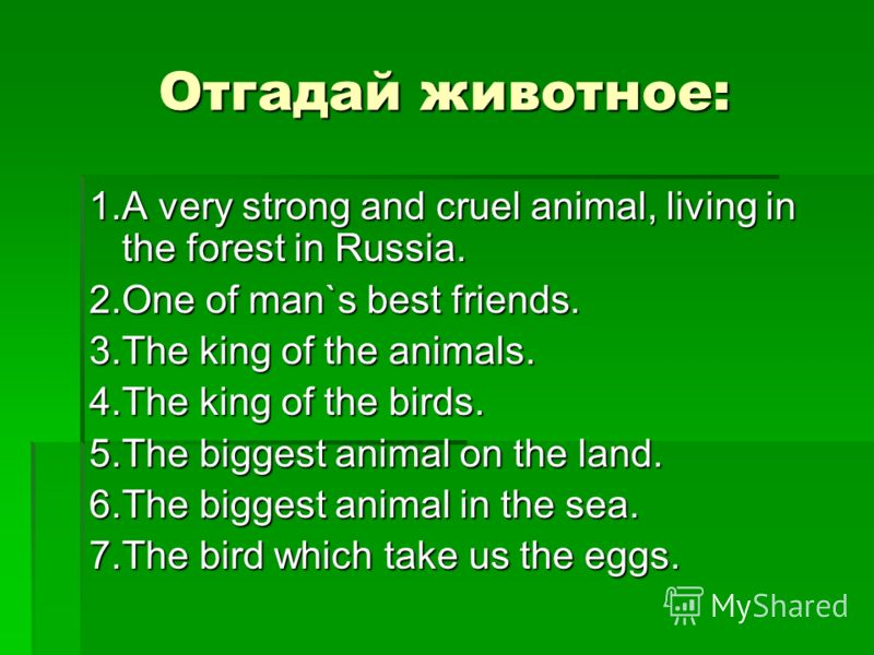 Отгадай животное: 1.A very strong and cruel animal, living in the forest in Russia. 2.One of man`s best friends. 3.The king of the animals. 4.The king of the birds. 5.The biggest animal on the land. 6.The biggest animal in the sea. 7.The bird which t