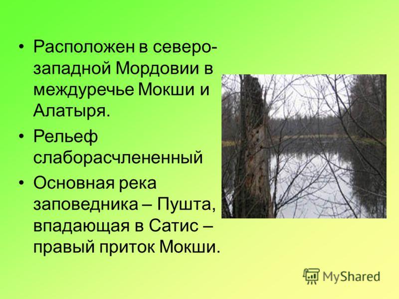 Расположен в северо- западной Мордовии в междуречье Мокши и Алатыря. Рельеф слаборасчлененный Основная река заповедника – Пушта, впадающая в Сатис – правый приток Мокши.