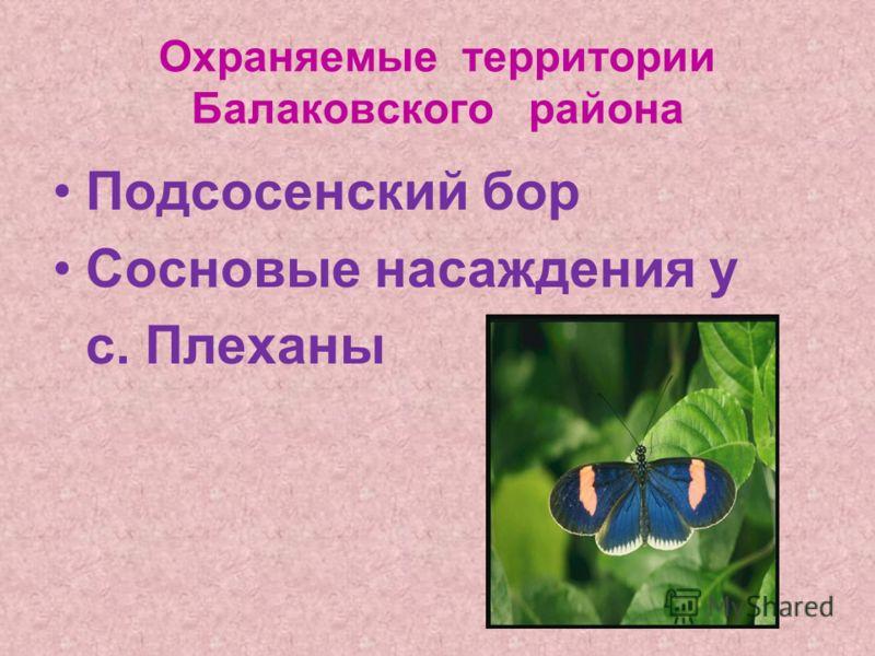 Охраняемые территории Балаковского района Подсосенский бор Сосновые насаждения у с. Плеханы