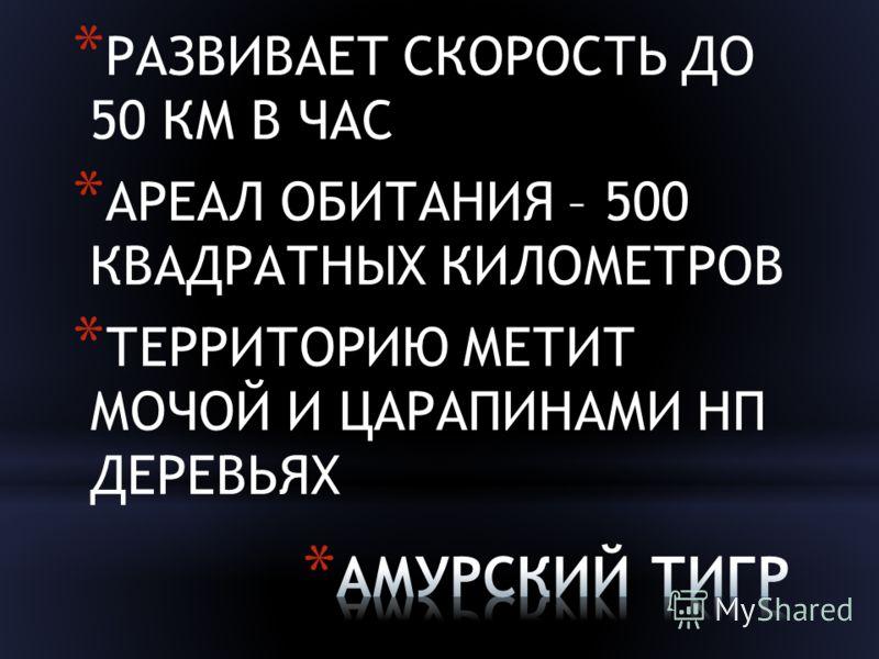 * РАЗВИВАЕТ СКОРОСТЬ ДО 50 КМ В ЧАС * АРЕАЛ ОБИТАНИЯ – 500 КВАДРАТНЫХ КИЛОМЕТРОВ * ТЕРРИТОРИЮ МЕТИТ МОЧОЙ И ЦАРАПИНАМИ НП ДЕРЕВЬЯХ