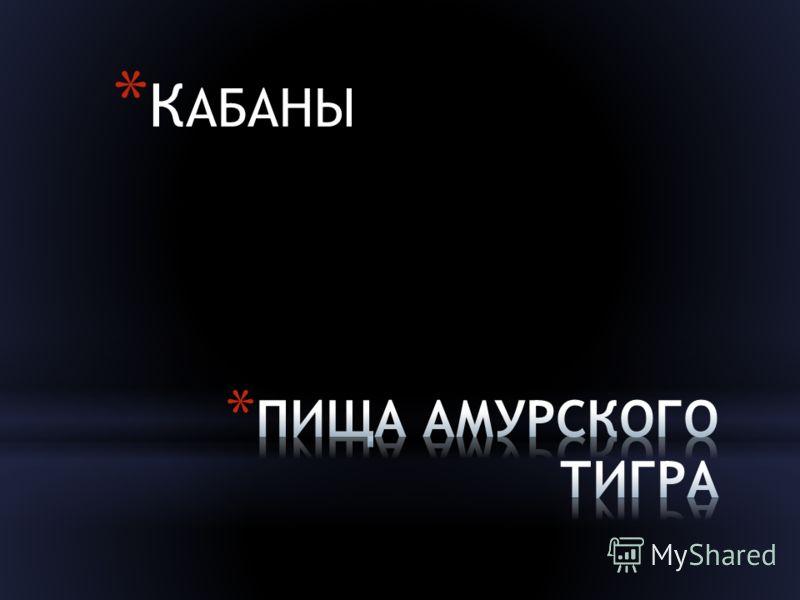 * К АБАНЫ