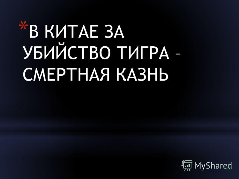 * В КИТАЕ ЗА УБИЙСТВО ТИГРА – СМЕРТНАЯ КАЗНЬ