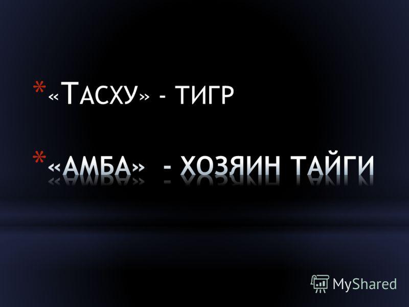 * « Т АСХУ» - ТИГР