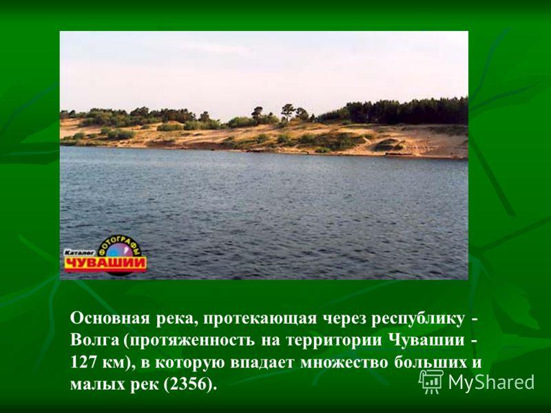 Основная река, протекающая через республику - Волга (протяженность на территории Чувашии - 127 км), в которую впадает множество больших и малых рек (2356).