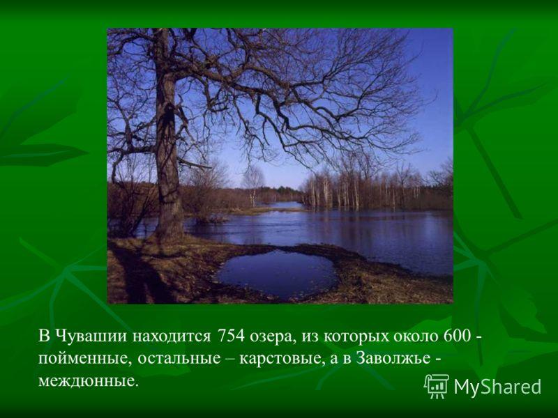 В Чувашии находится 754 озера, из которых около 600 - пойменные, остальные – карстовые, а в Заволжье - междюнные.