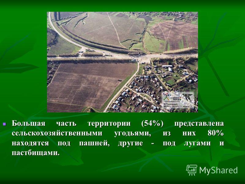 Большая часть территории (54%) представлена сельскохозяйственными угодьями, из них 80% находятся под пашней, другие - под лугами и пастбищами. Большая часть территории (54%) представлена сельскохозяйственными угодьями, из них 80% находятся под пашней