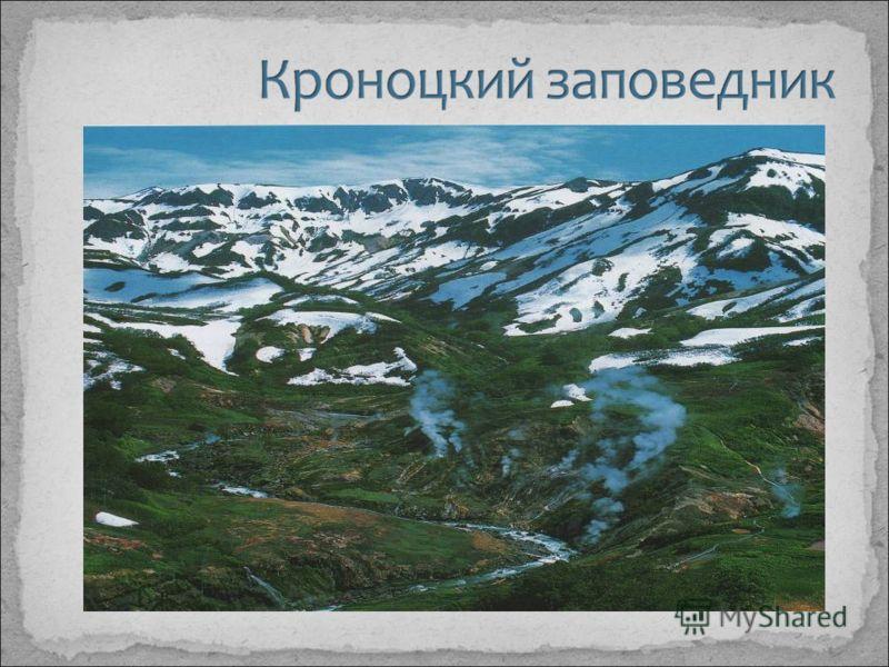 3 этап. Сбор фотографий и иллюстраций по теме «Заповедные зоны Камчатки»