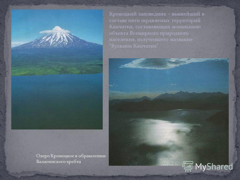 В заповеднике 25 вулканов, 8 из которых – действующие ( на Камчатке всего 30 действующих вулканов). Центральное место занимает вулкан Кроноцкая сопка
