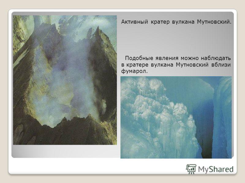 Природные комплексы паркаЮжно-Камчатский являются частью Восточно-Камчатского вулканического хребта, так что именно вулканные факторы в основном определяют их становление и облик. Долина реки Вилюча