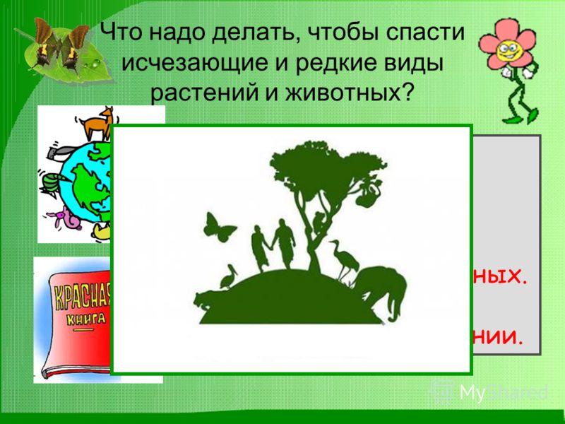 Что надо делать, чтобы спасти исчезающие и редкие виды растений и животных? Запретить охоту. Запретить чрезмерную добычу животных. Запретить разрушать места обитания животных. Охранять заповедники. Заботиться о размножении.