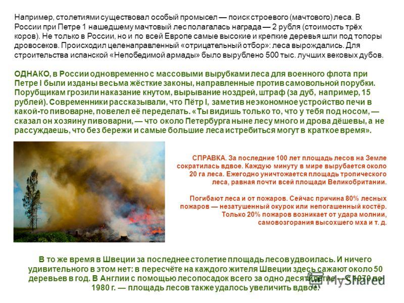 Например, столетиями существовал особый промысел поиск строевого (мачтового) леса. В России при Петре 1 нашедшему мачтовый лес полагалась награда 2 рубля (стоимость трёх коров). Не только в России, но и по всей Европе самые высокие и крепкие деревья