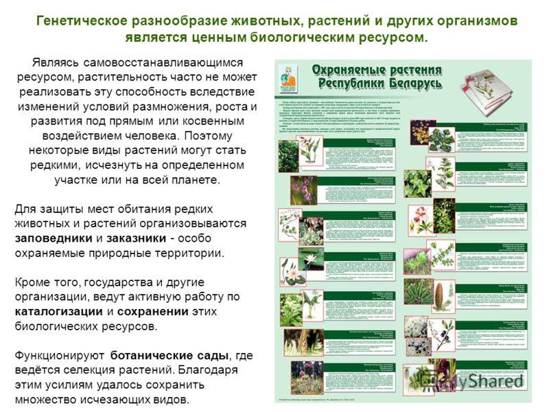 Генетическое разнообразие животных, растений и других организмов является ценным биологическим ресурсом. Являясь самовосстанавливающимся ресурсом, растительность часто не может реализовать эту способность вследствие изменений условий размножения, рос