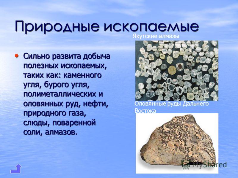 Природные ископаемые Сильно развита добыча полезных ископаемых, таких как: каменного угля, бурого угля, полиметаллических и оловянных руд, нефти, природного газа, слюды, поваренной соли, алмазов. Сильно развита добыча полезных ископаемых, таких как:
