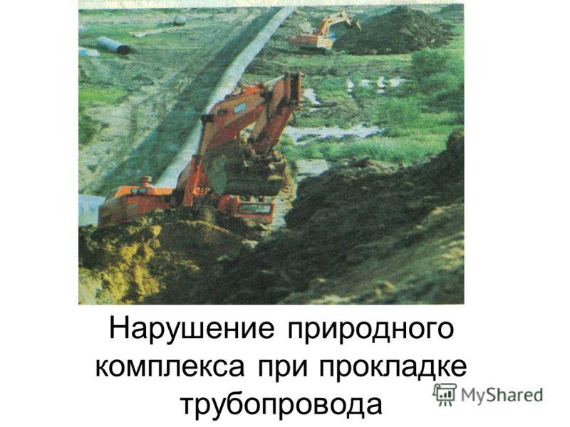 Нарушение природного комплекса при прокладке трубопровода